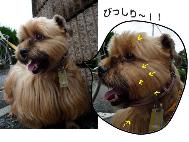 25日ブログ10.jpg