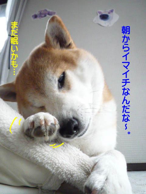 25日ブログ2.jpg