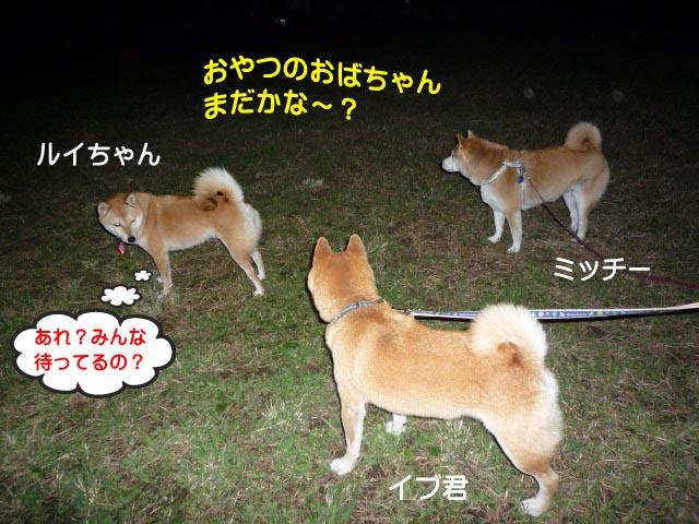 29日ブログ11.jpg
