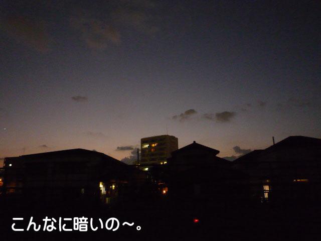 29日ブログ7.jpg